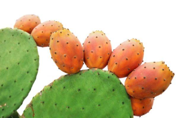 Un frutto ricco di benefici. Scopri quali!