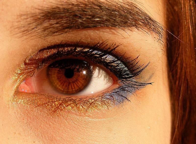 persone occhi marroni Sguardo interessanti
