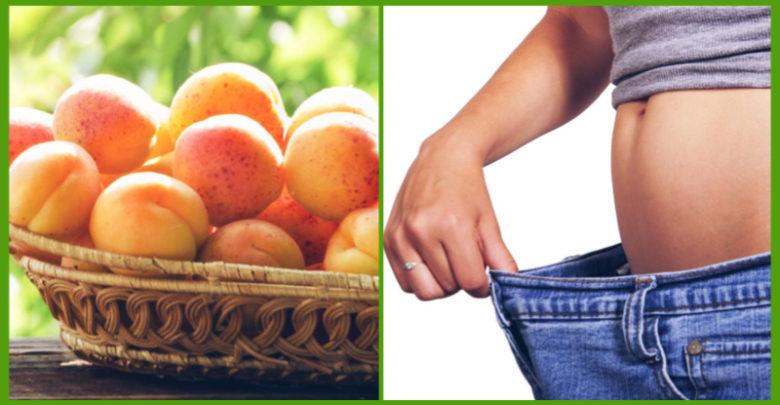 Le albicocche, i benefici di un frutto molto amato