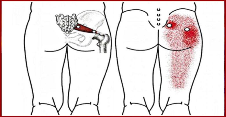 Lo stretching che elimina il mal di schiena