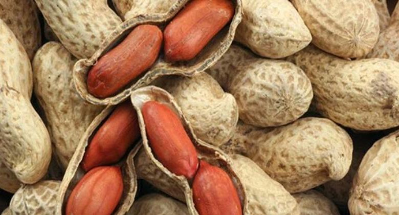 Benefici arachidi