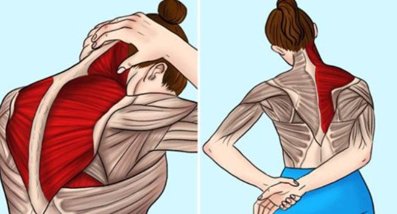 Tensione muscolare da stress nervoso: come l'ho risolta