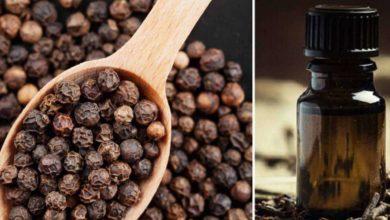 Photo of Le innumerevoli proprietà dell'olio di pepe nero per il nostro organismo