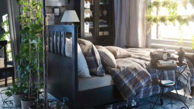 Photo of Piante benefiche per dormire da sistemare nella camera da letto