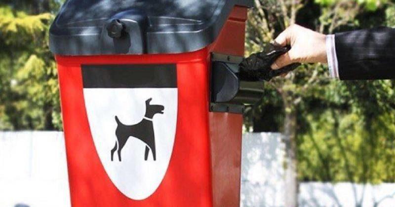 nuove leggi per padroni di cani