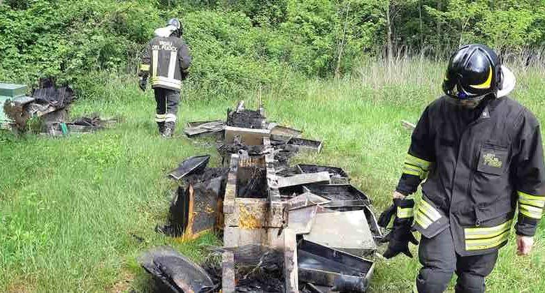 api bruciate Friuli