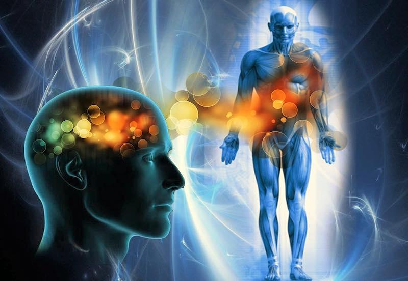 Il corpo parla Bioenergia