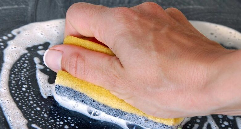 spugne per lavare i piatti