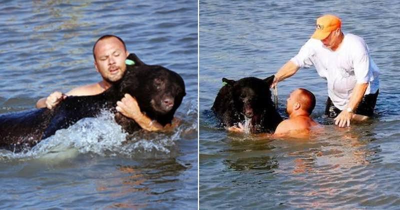 Un uomo molto coraggioso salva un orso
