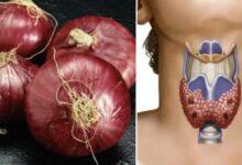 Photo of Il rimedio naturale a base di cipolla rossa per trattare i disturbi della tiroide