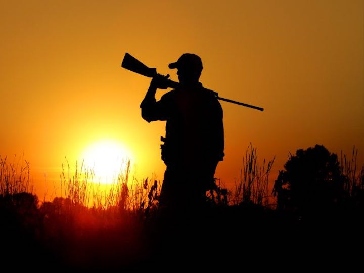 Un cacciatore spara ad un cervo