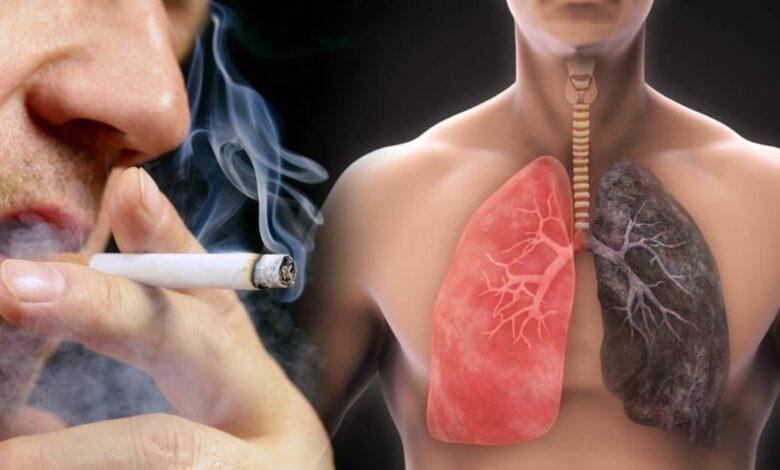 polmoni possono rigenerarsi se si smette di fumare