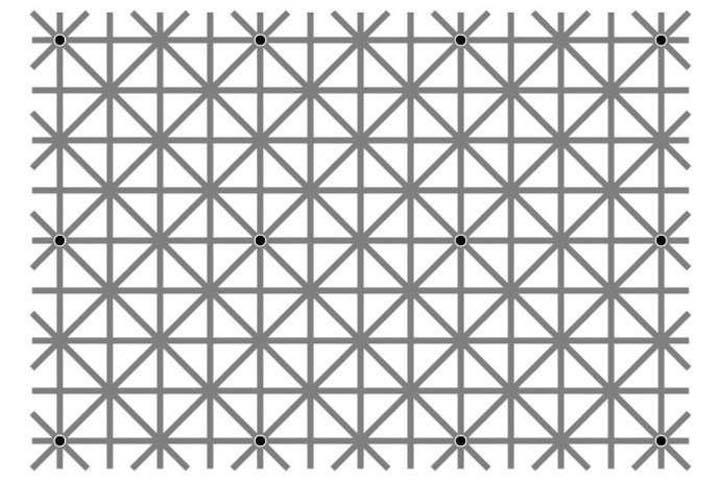quanti punti neri vedi nell'immagine