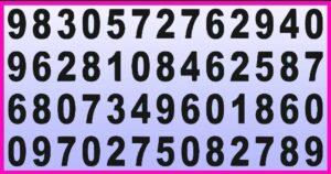 riesci a trovare il numero 868